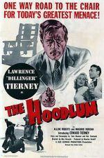 Watch The Hoodlum Vodlocker